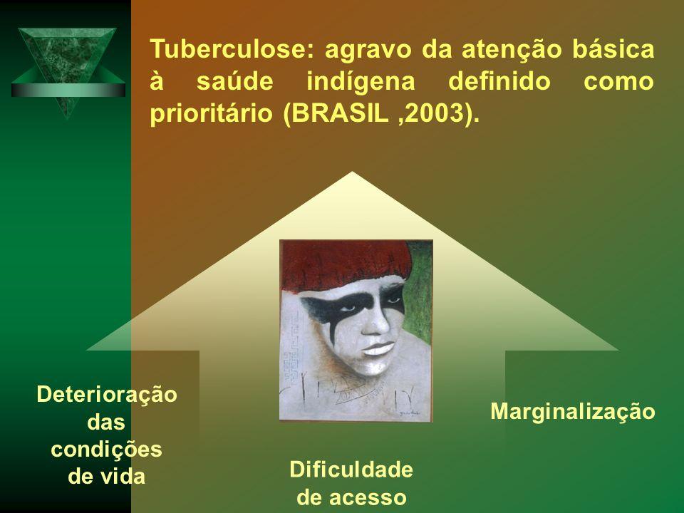 Tuberculose: agravo da atenção básica à saúde indígena definido como prioritário (BRASIL,2003). Marginalização Dificuldade de acesso Deterioração das