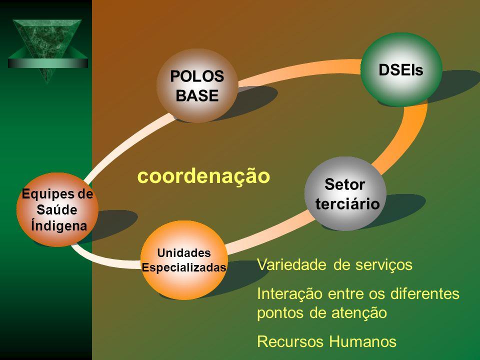 Equipes de Saúde Índigena Setor terciário Unidades Especializadas DSEIs POLOS BASE Variedade de serviços Interação entre os diferentes pontos de atenç