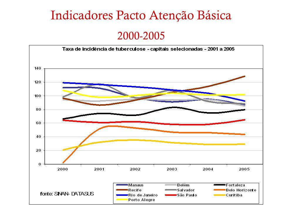 Indicadores Pacto Atenção Básica 2000-2005