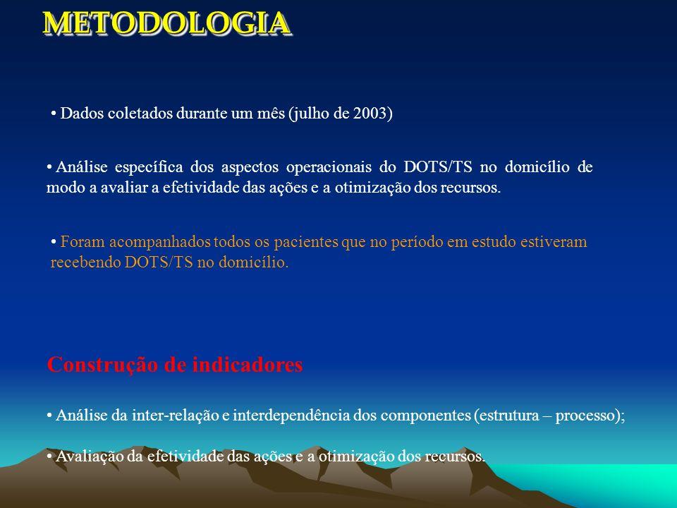 Dados coletados durante um mês (julho de 2003) Análise específica dos aspectos operacionais do DOTS/TS no domicílio de modo a avaliar a efetividade da