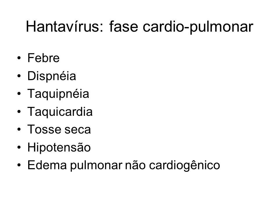 Hantavírus: fase cardio-pulmonar Febre Dispnéia Taquipnéia Taquicardia Tosse seca Hipotensão Edema pulmonar não cardiogênico