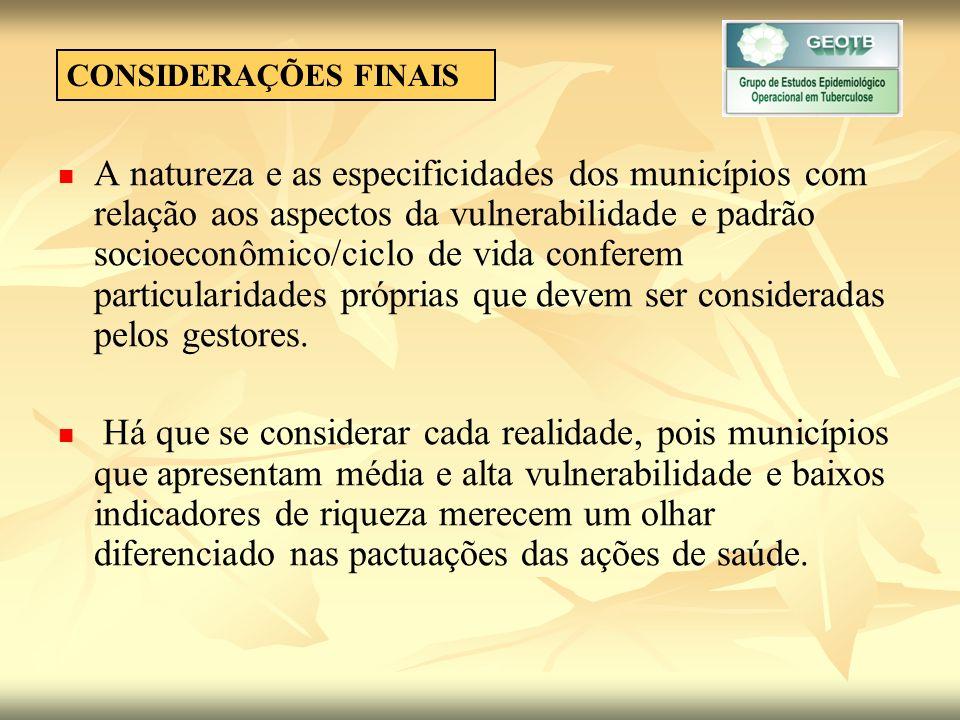 CONSIDERAÇÕES FINAIS A natureza e as especificidades dos municípios com relação aos aspectos da vulnerabilidade e padrão socioeconômico/ciclo de vida conferem particularidades próprias que devem ser consideradas pelos gestores.