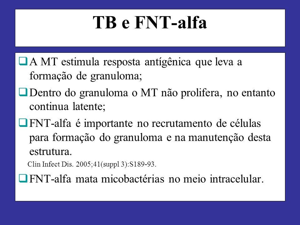 TB e FNT-alfa A MT estimula resposta antígênica que leva a formação de granuloma; Dentro do granuloma o MT não prolifera, no entanto continua latente; FNT-alfa é importante no recrutamento de células para formação do granuloma e na manutenção desta estrutura.