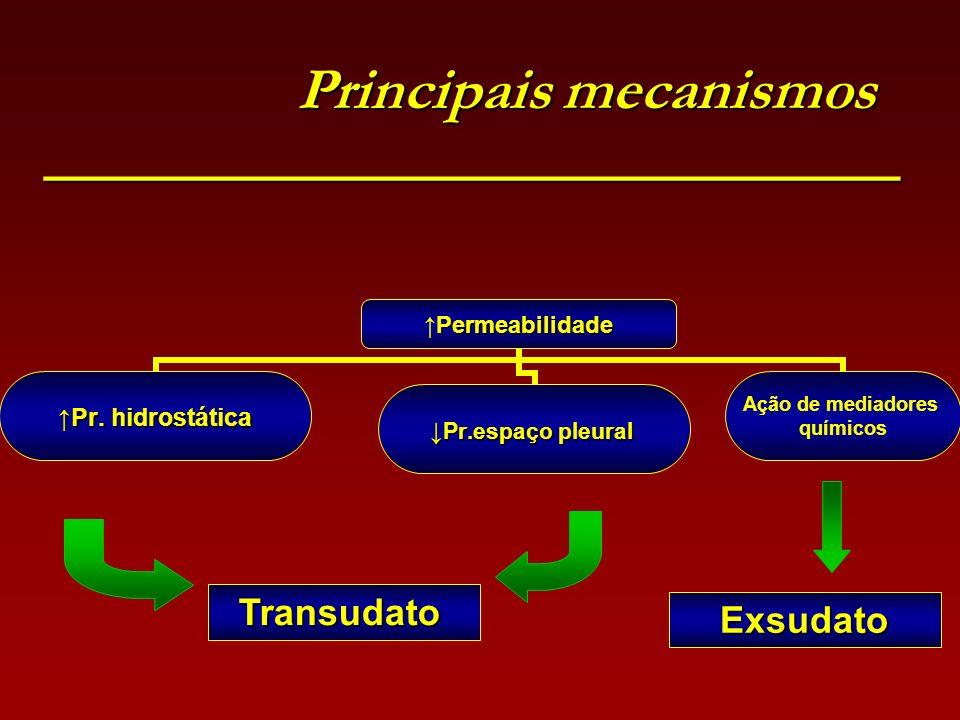 Principais mecanismos ________________________________ Principais mecanismos ________________________________ PermeabilidadePermeabilidade Pr. hidrost