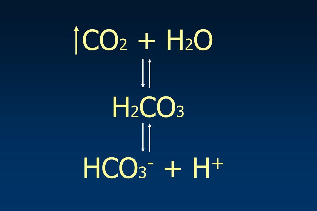 CO 2 + H 2 O H 2 CO 3 HCO 3 - + H +