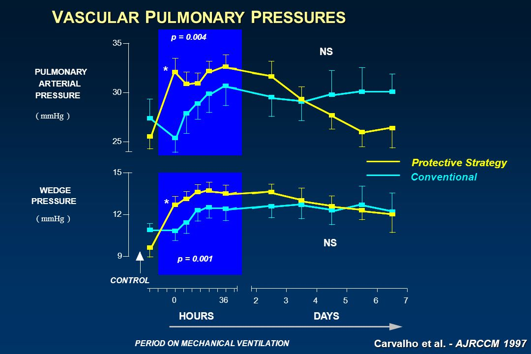 V ASCULAR P ULMONARY P RESSURES 9 12 15 25 30 35 p = 0.001 p = 0.004 PULMONARY ARTERIAL PRESSURE ( mmHg ) WEDGE PRESSURE ( mmHg ) Protective Strategy Conventional 0 36 234567 HOURSDAYS PERIOD ON MECHANICAL VENTILATION CONTROL NS * * Carvalho et al.