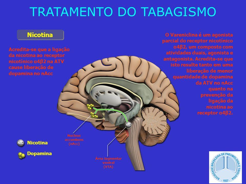 Nucleus accumbens (nAcc) Área tegmentar ventral (VTA) Nicotina Dopamina Acredita-se que a ligação da nicotina ao receptor nicotínico α4β2 na ATV cause