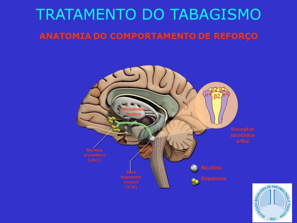 SINDROME DE ABSTINÊNCIA (70-90%) - Tonteira - Depressão - Frustração - Impaciência - Ansiedade - Irritabilidade - Alterações do sono - Concentração - Cefaléia - Aumento do apetite Etc.