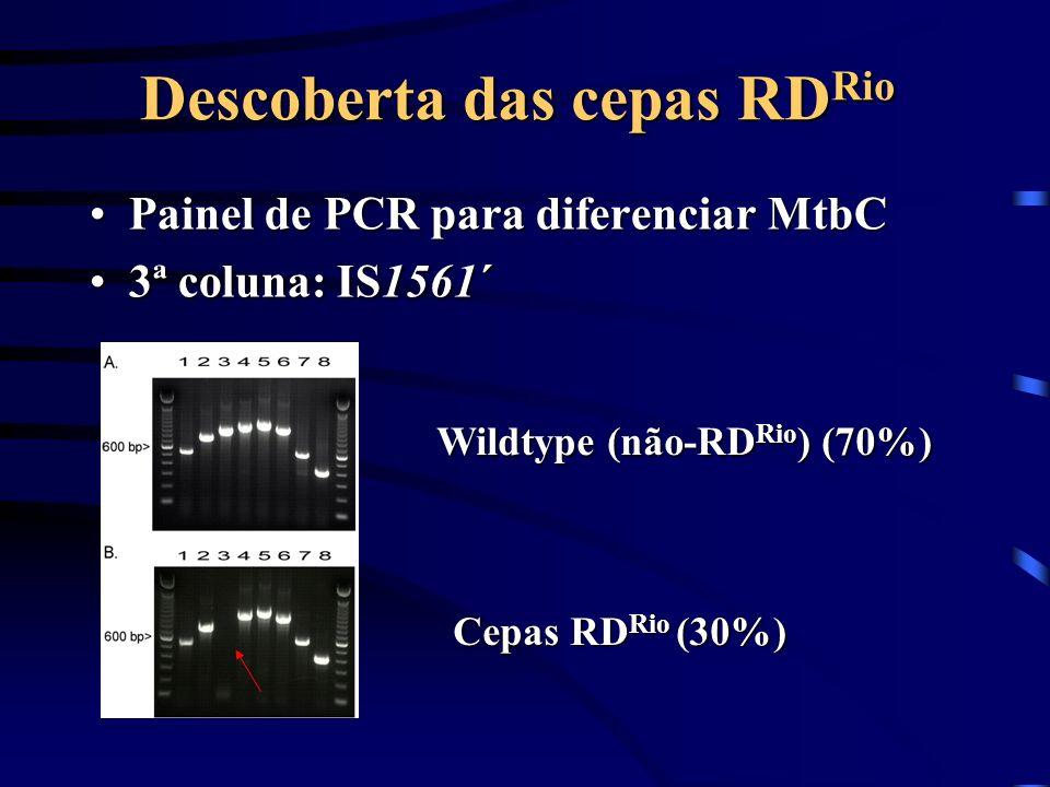 Descoberta das cepas RD Rio Painel de PCR para diferenciar MtbCPainel de PCR para diferenciar MtbC 3ª coluna: IS1561´3ª coluna: IS1561´ Wildtype (não-