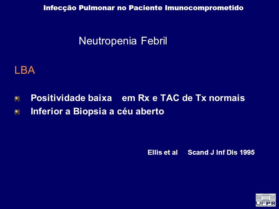 Infecção Pulmonar no Paciente Imunocomprometido Neutropenia Febril LBA Positividade baixa em Rx e TAC de Tx normais Inferior a Biopsia a céu aberto El