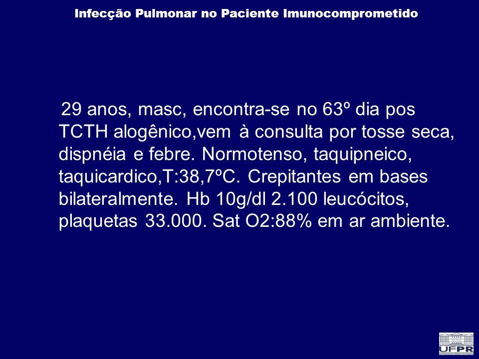 Infecção Pulmonar no Paciente Imunocomprometido 29 anos, masc, encontra-se no 63º dia pos TCTH alogênico,vem à consulta por tosse seca, dispnéia e feb