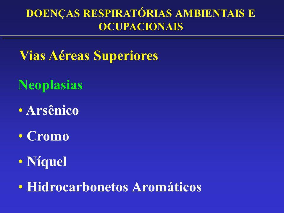 Vias Aéreas Inferiores Bronquite: Dióxido de Enxofre Ozônio Fumos Metálicos Bronquiolite: Óxidos de Nitrogênio Cloro, Fluor Dióxido de Enxofre DOENÇAS RESPIRATÓRIAS AMBIENTAIS E OCUPACIONAIS