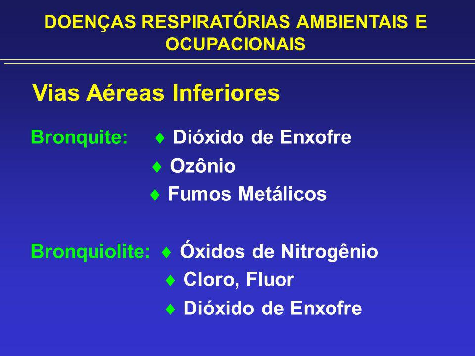 Vias Aéreas Inferiores Bronquite: Dióxido de Enxofre Ozônio Fumos Metálicos Bronquiolite: Óxidos de Nitrogênio Cloro, Fluor Dióxido de Enxofre DOENÇAS