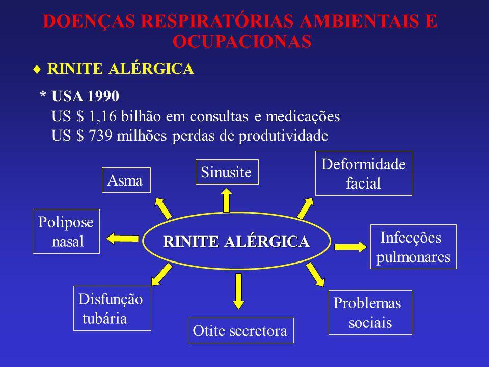RINITE ALÉRGICA * USA 1990 US $ 1,16 bilhão em consultas e medicações US $ 739 milhões perdas de produtividade DOENÇAS RESPIRATÓRIAS AMBIENTAIS E OCUP
