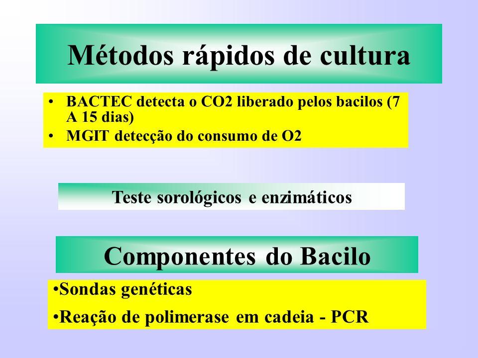 Métodos rápidos de cultura BACTEC detecta o CO2 liberado pelos bacilos (7 A 15 dias) MGIT detecção do consumo de O2 Teste sorológicos e enzimáticos Co