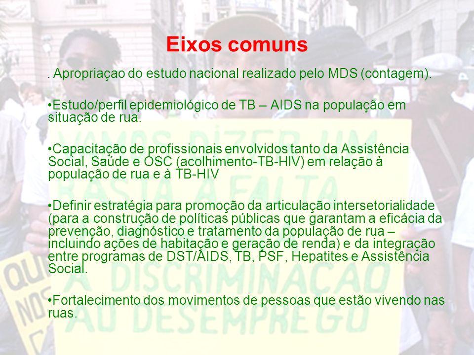 Eixos comuns. Apropriaçao do estudo nacional realizado pelo MDS (contagem).