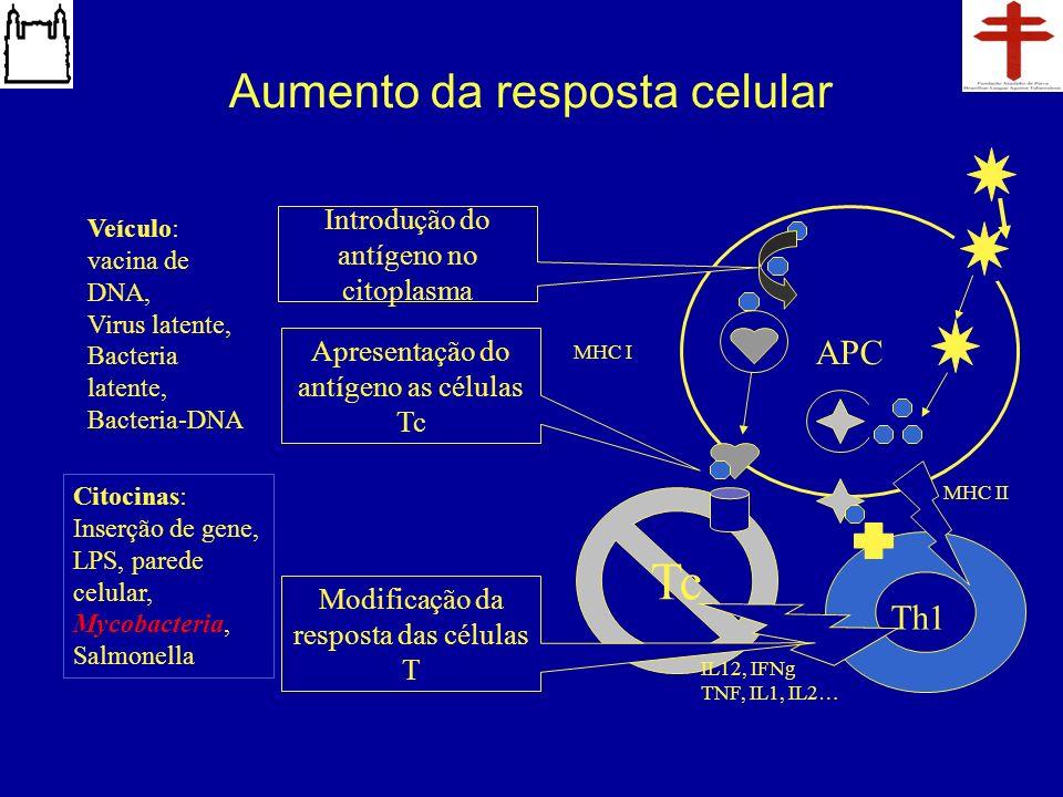 Aumento da resposta celular Tc Th1 APC Introdução do antígeno no citoplasma Modificação da resposta das células T Veículo: vacina de DNA, Virus latent