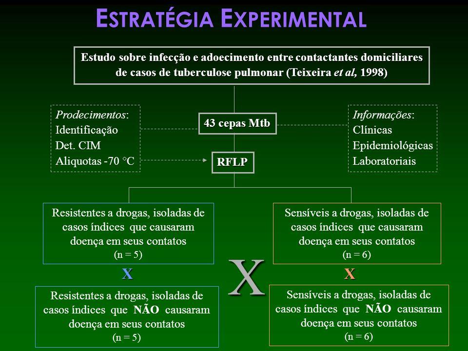 E STRATÉGIA E XPERIMENTAL Estudo sobre infecção e adoecimento entre contactantes domiciliares de casos de tuberculose pulmonar (Teixeira et al, 1998)