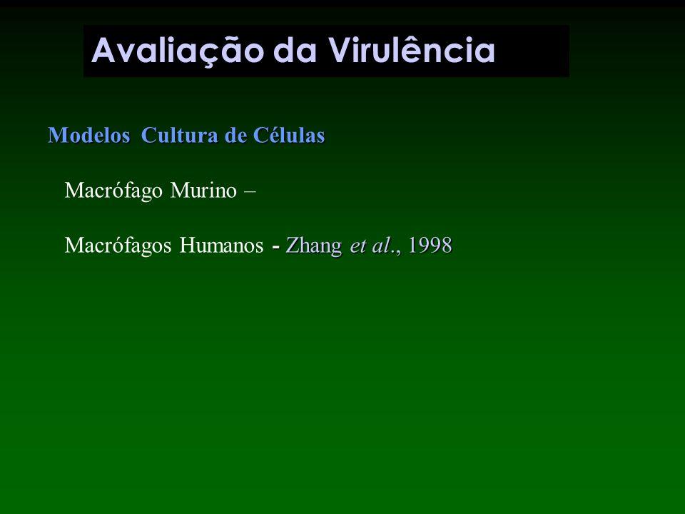 4 8 16 20 24 Tempo (Dias) CFU (log) `2 3 4 5 6 7 H37Rv H37Ra Pulmão / Baço Modelo Animal CFU (log)