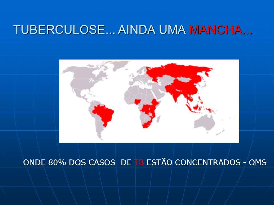 MEDIDAS PARA O CONTROLE DA TB: Medidas preventivas – Vacinação RN / Vigil.