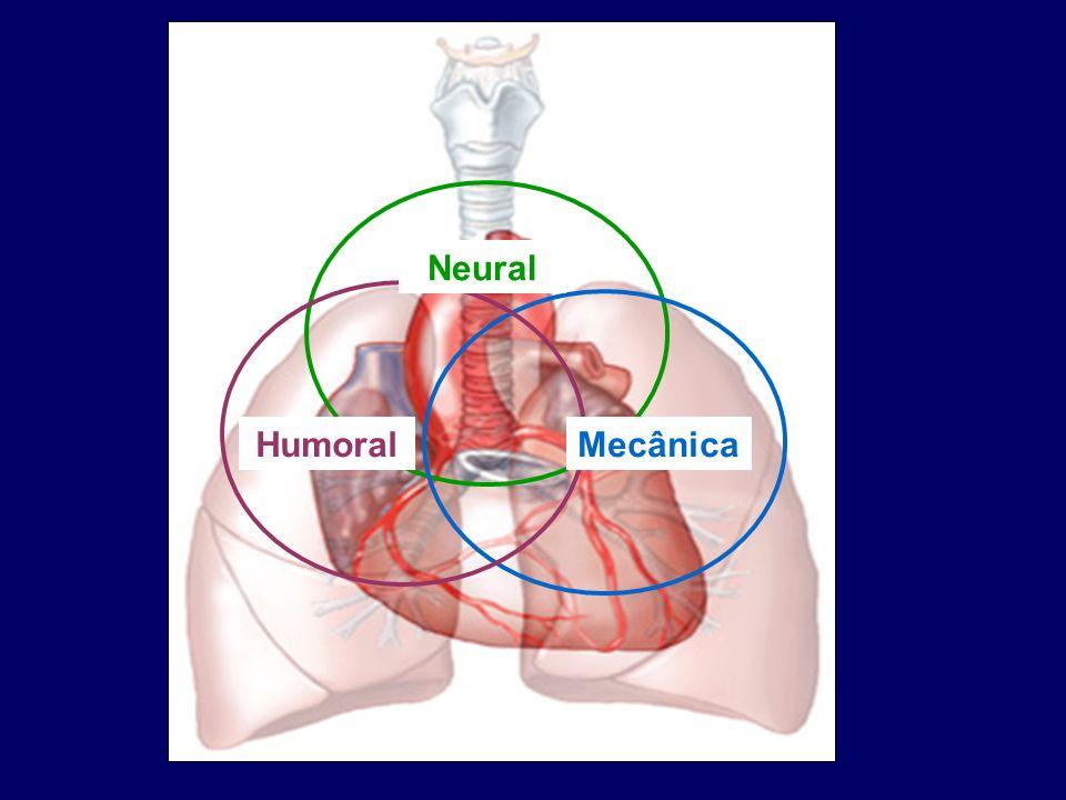 Repercussões mecânicas Retorno venoso Relações entre o ventrículo direito e a circulação pulmonar Função do ventrículo esquerdo Situações clínicas