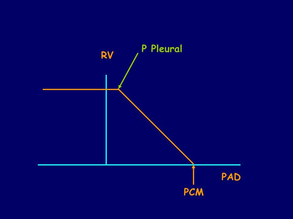 RV PAD PCM P Pleural