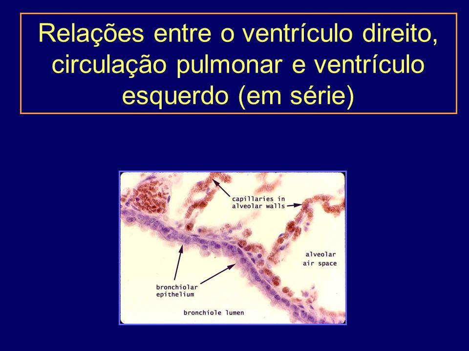 Relações entre o ventrículo direito, circulação pulmonar e ventrículo esquerdo (em série)