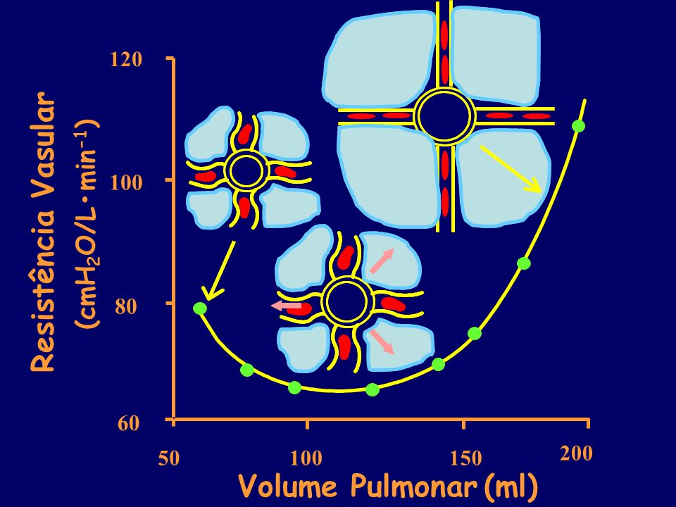 120 Resistência Vasular (cmH 2 O/Lmin -1 ) 60 100 80 Volume Pulmonar (ml) 50 200 100150