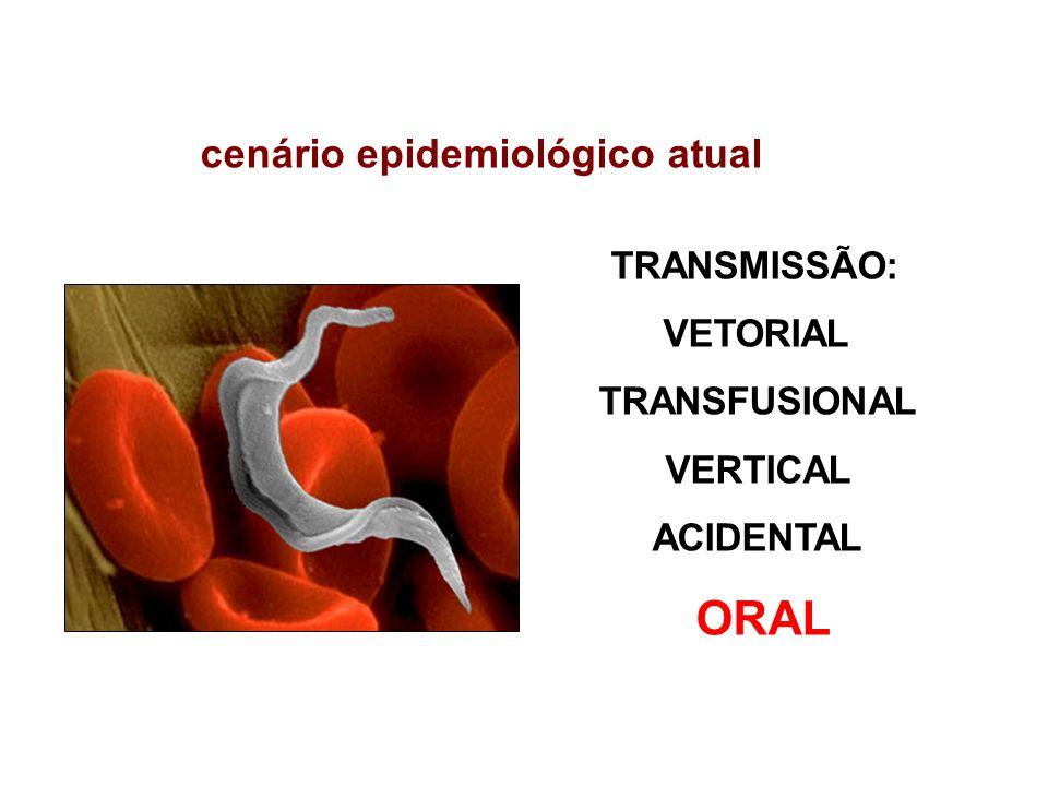 TRANSMISSÃO: VETORIAL TRANSFUSIONAL VERTICAL ACIDENTAL ORAL cenário epidemiológico atual