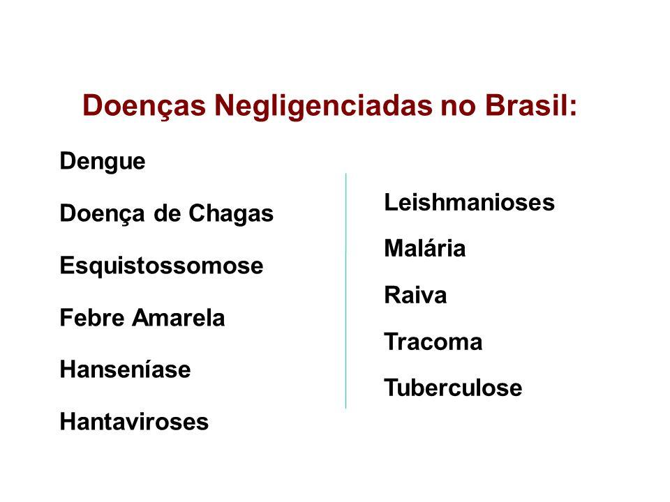 Doenças Negligenciadas no Brasil: Dengue Doença de Chagas Esquistossomose Febre Amarela Hanseníase Hantaviroses Leishmanioses Malária Raiva Tracoma Tu