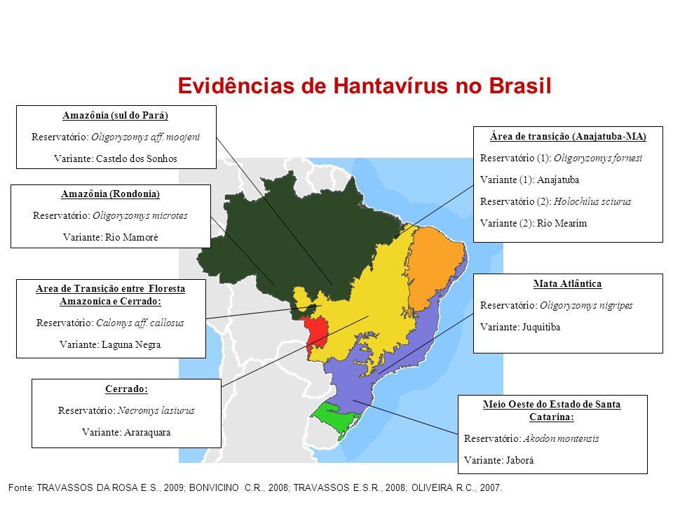 Fonte: TRAVASSOS DA ROSA E.S., 2009; BONVICINO C.R., 2008; TRAVASSOS E.S.R., 2008; OLIVEIRA R.C., 2007. Área de transição (Anajatuba-MA) Reservatório