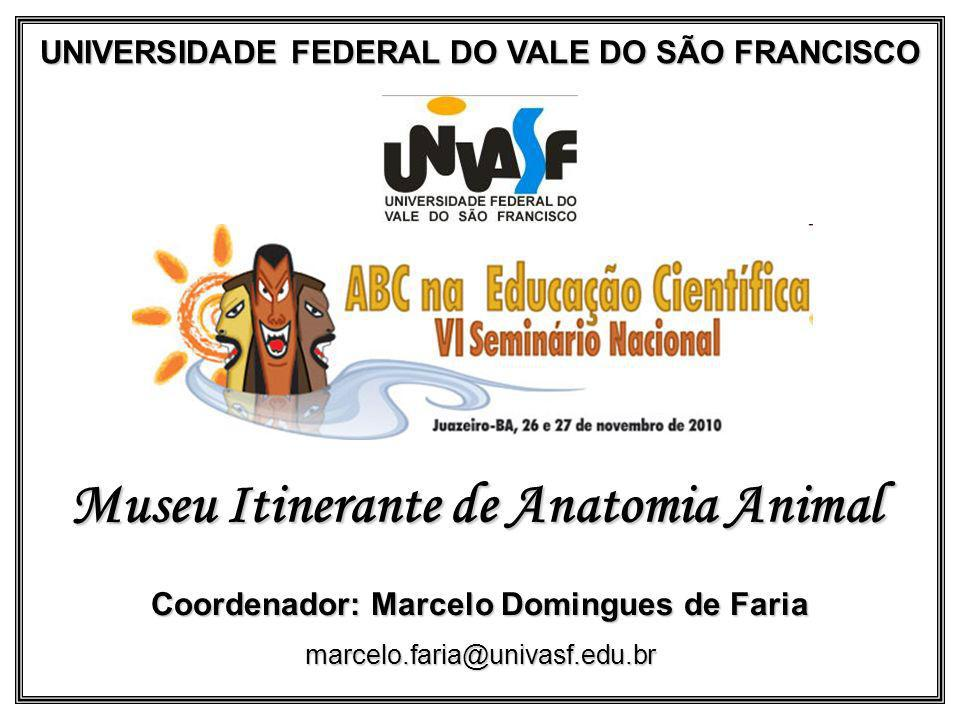 UNIVERSIDADE FEDERAL DO VALE DO SÃO FRANCISCO Museu Itinerante de Anatomia Animal Coordenador: Marcelo Domingues de Faria marcelo.faria@univasf.edu.br
