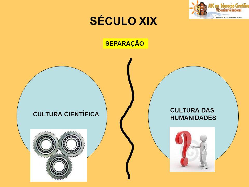 SÉCULO XIX SEPARAÇÃO CULTURA CIENTÍFICA CULTURA DAS HUMANIDADES