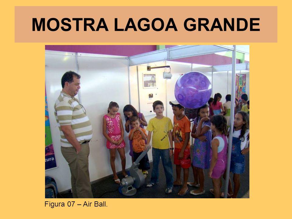 MOSTRA LAGOA GRANDE Figura 07 – Air Ball.