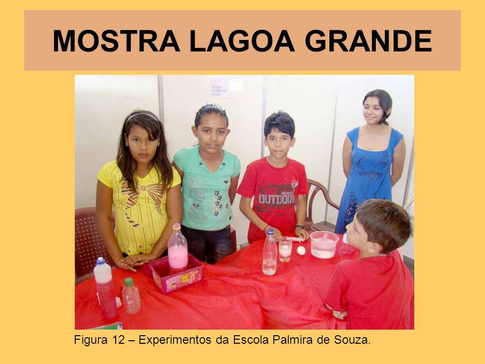 MOSTRA LAGOA GRANDE Figura 12 – Experimentos da Escola Palmira de Souza.