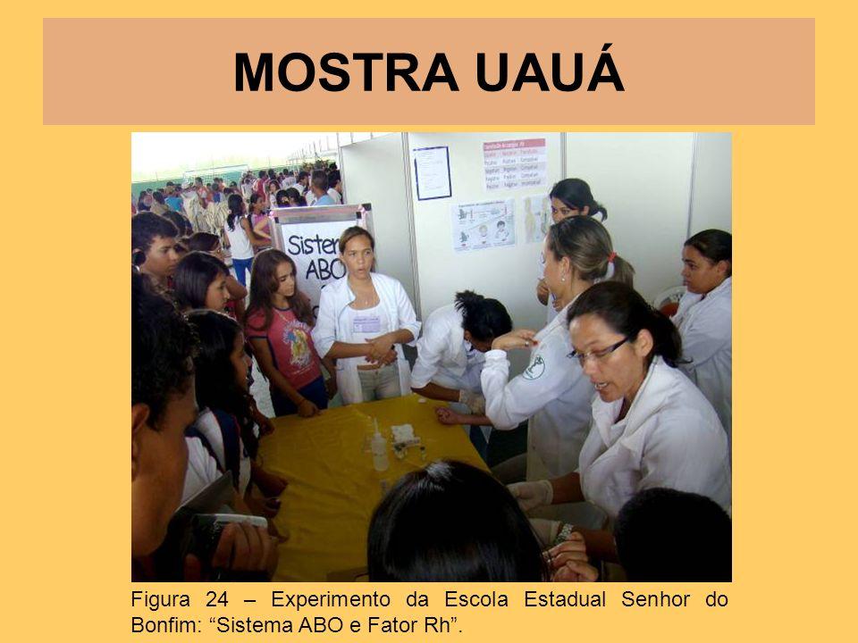 MOSTRA UAUÁ Figura 24 – Experimento da Escola Estadual Senhor do Bonfim: Sistema ABO e Fator Rh.