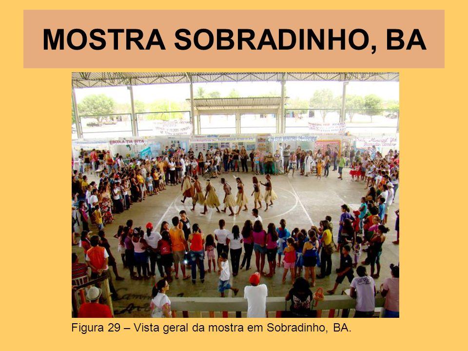 MOSTRA SOBRADINHO, BA Figura 29 – Vista geral da mostra em Sobradinho, BA.