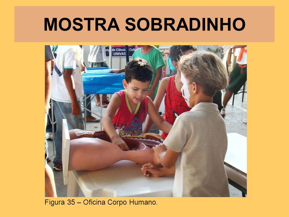 MOSTRA SOBRADINHO Figura 35 – Oficina Corpo Humano.