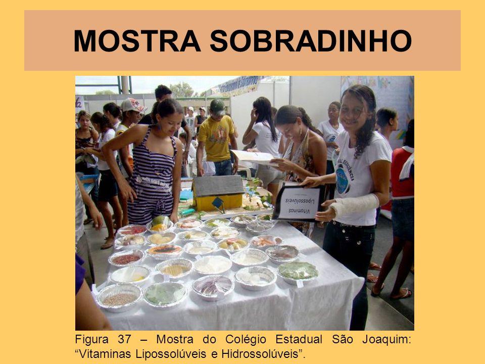 MOSTRA SOBRADINHO Figura 37 – Mostra do Colégio Estadual São Joaquim: Vitaminas Lipossolúveis e Hidrossolúveis.