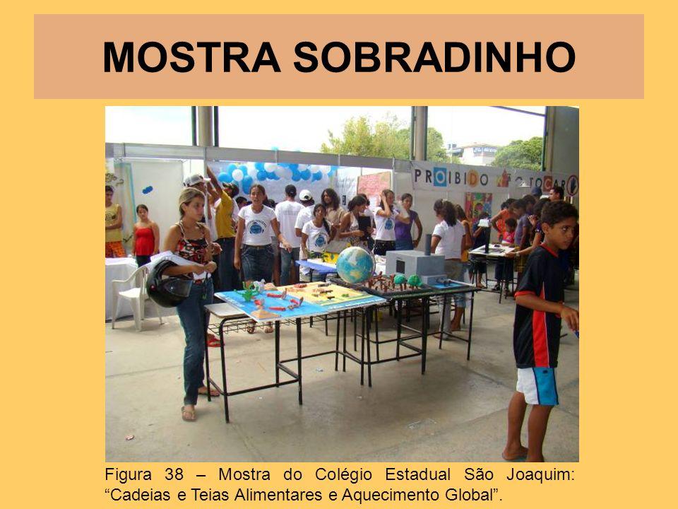 MOSTRA SOBRADINHO Figura 38 – Mostra do Colégio Estadual São Joaquim: Cadeias e Teias Alimentares e Aquecimento Global.
