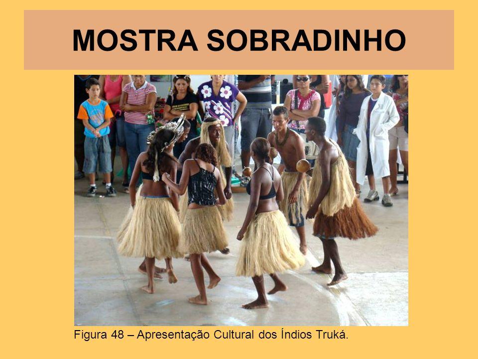 MOSTRA SOBRADINHO Figura 48 – Apresentação Cultural dos Índios Truká.