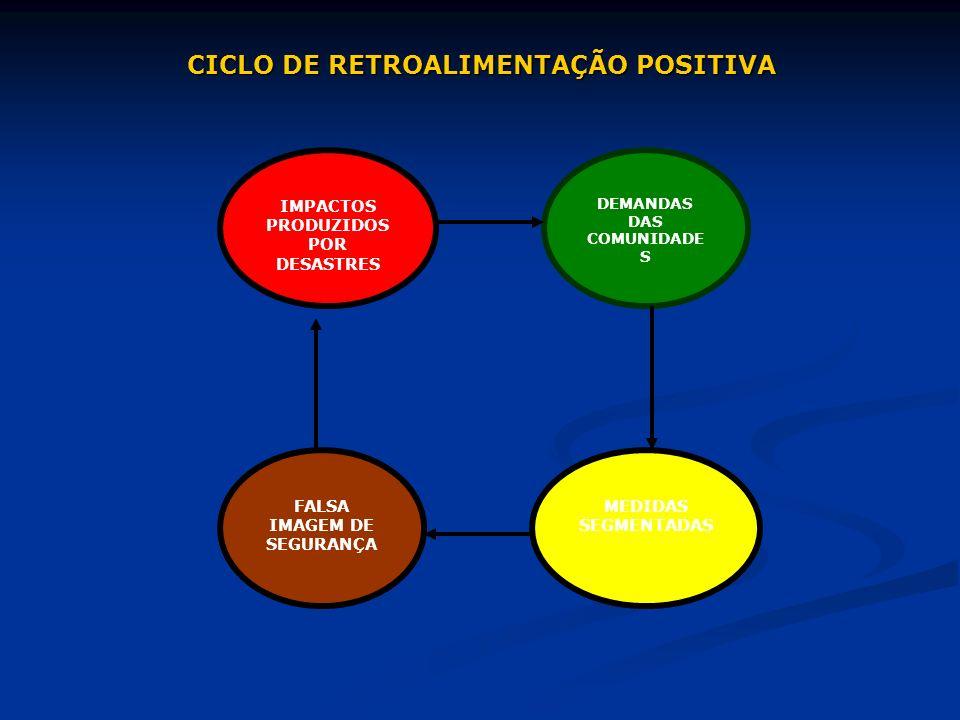 CICLO DE RETROALIMENTAÇÃO POSITIVA IMPACTOS PRODUZIDOS POR DESASTRES DEMANDAS DAS COMUNIDADE S FALSA IMAGEM DE SEGURANÇA MEDIDAS SEGMENTADAS