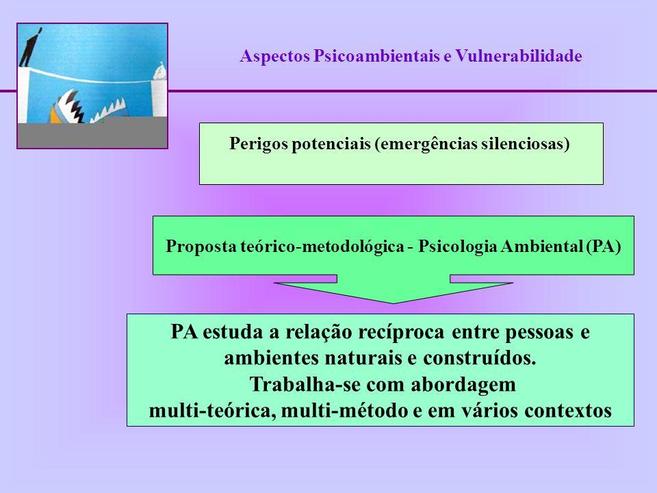 Aspectos Psicoambientais e Vulnerabilidade Associar duas linhas de investigação: Percepção Ambiental de Riscos e Comportamento Humano Orientação integradora entre níveis de explicação psicológico e social Proposta teórico-metodológica - Psicologia Ambiental
