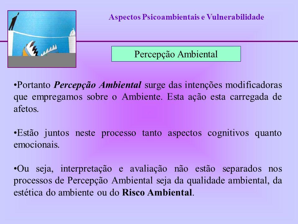 Aspectos Psicoambientais e Vulnerabilidade Percepção Ambiental Portanto Percepção Ambiental surge das intenções modificadoras que empregamos sobre o A