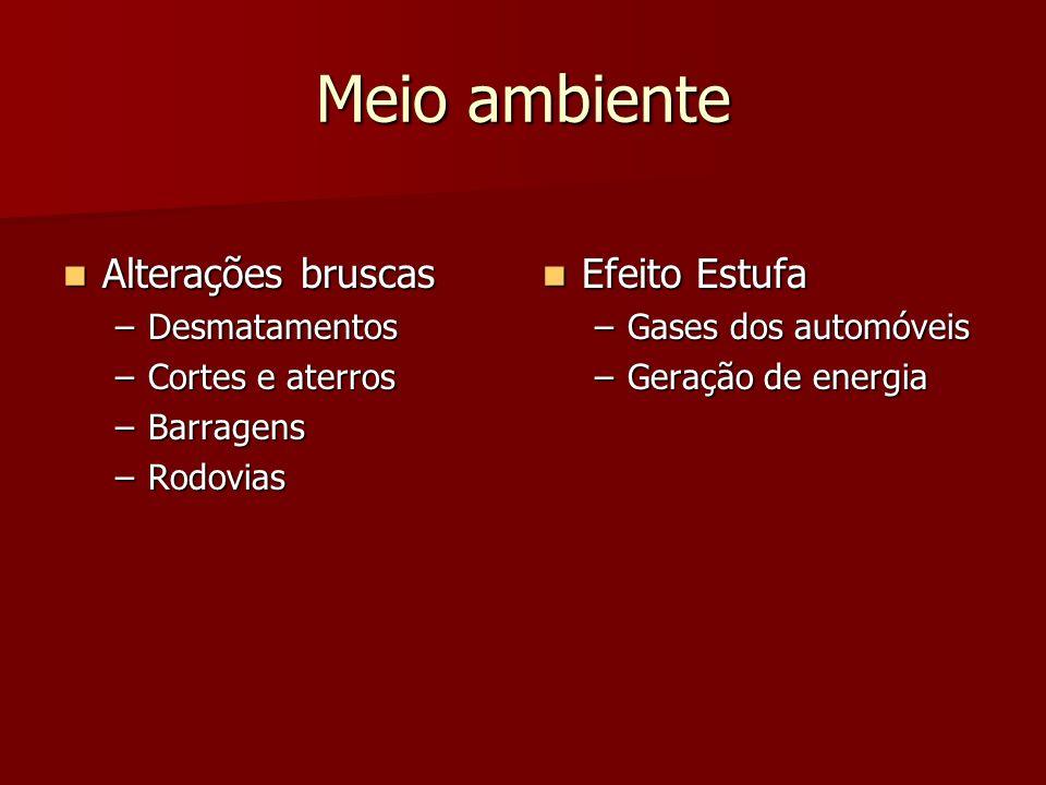 Meio ambiente Alterações bruscas Alterações bruscas –Desmatamentos –Cortes e aterros –Barragens –Rodovias Efeito Estufa Efeito Estufa –Gases dos autom