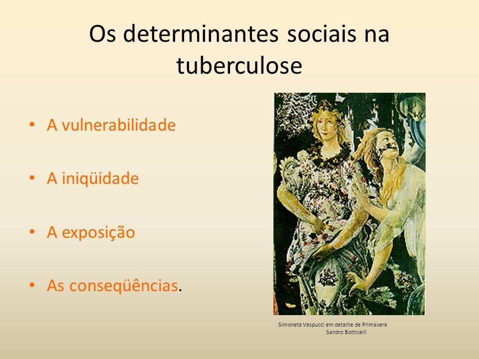Os determinantes sociais na tuberculose A vulnerabilidade A iniqüidade A exposição As conseqüências. Simoneta Vespucci em detalhe de Primavera Sandro