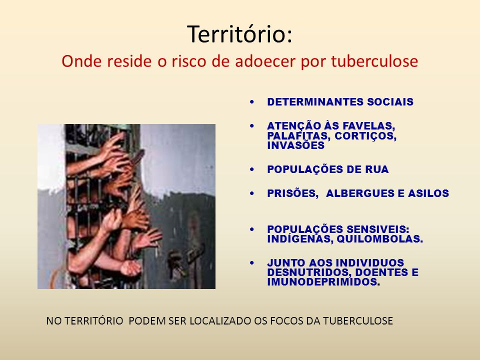 Território: Onde reside o risco de adoecer por tuberculose DETERMINANTES SOCIAIS ATENÇÃO ÀS FAVELAS, PALAFITAS, CORTIÇOS, INVASÕES POPULAÇÕES DE RUA P