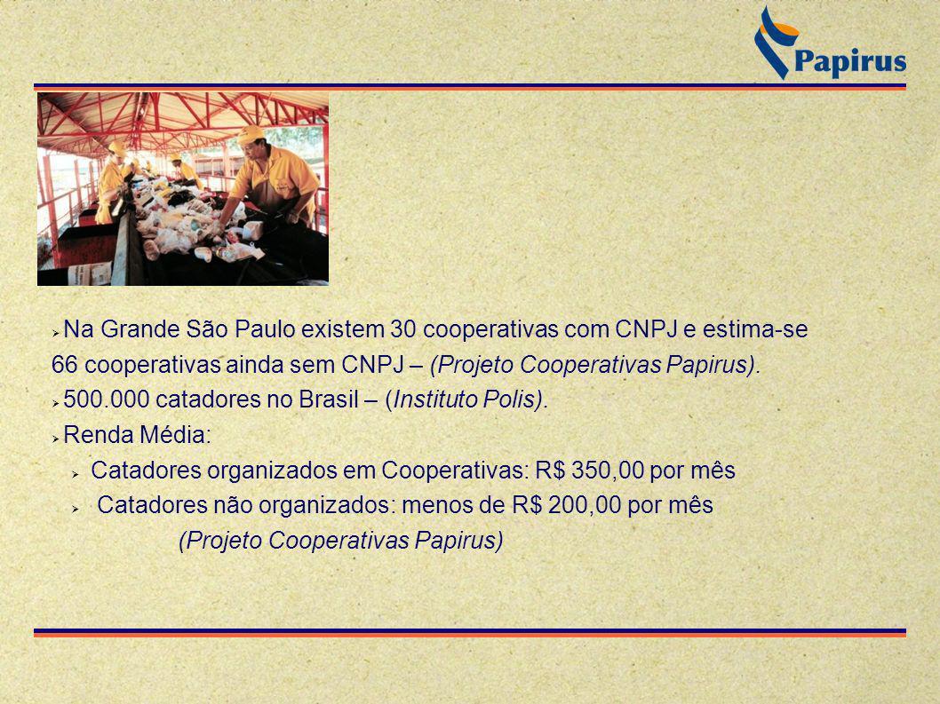 Na Grande São Paulo existem 30 cooperativas com CNPJ e estima-se 66 cooperativas ainda sem CNPJ – (Projeto Cooperativas Papirus). 500.000 catadores no