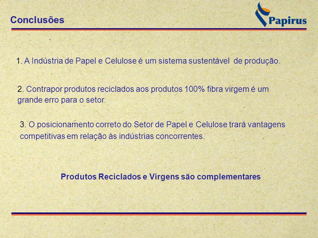 Conclusões 3. O posicionamento correto do Setor de Papel e Celulose trará vantagens competitivas em relação às indústrias concorrentes. 1. A Indústria