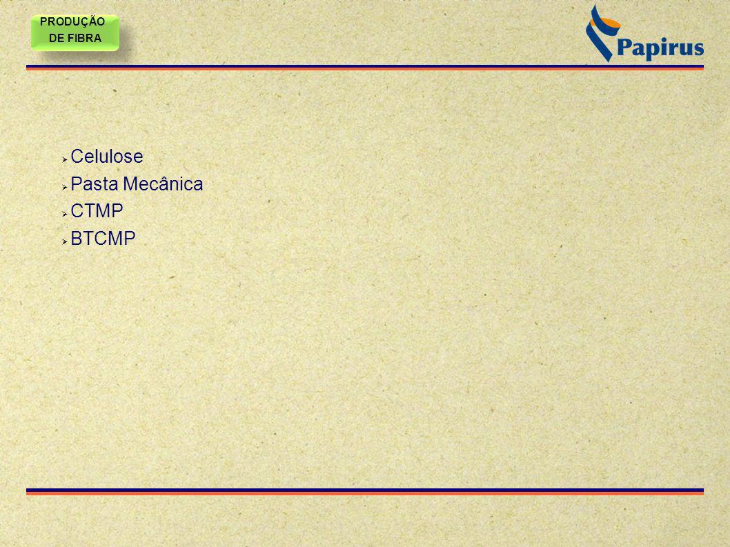 PRODUÇÃO DE FIBRA PRODUÇÃO DE FIBRA Celulose Pasta Mecânica CTMP BTCMP